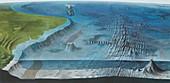 Ocean floor features,artwork