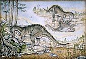 Baryonyx walkeri dinosausr,artwork
