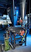 Microalgae food supplement production
