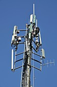 cellular antenna mast