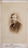 Alfred Russel Wallace,British naturalist