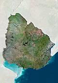 Uruguay,satellite image