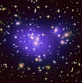 Abell 1689 galaxy cluster,HST image