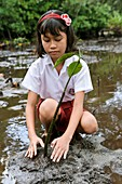 Environmental education,Indonesia