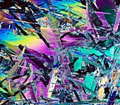 Mica schist folds,light micrograph