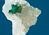 Amazonas,Brazil,satellite image