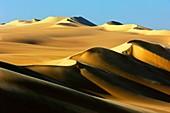 Great Sand Sea,Egyptian Sahara