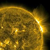Solar flare,SDO ultraviolet image