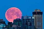 Moon setting over Vancouver skyline