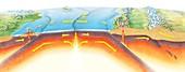 Plate tectonics,diagram