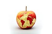 Healthy world,conceptual image