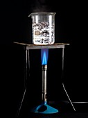 Boiling water with a bunsen burner