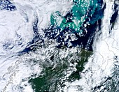 Barents Sea algal bloom,satellite image