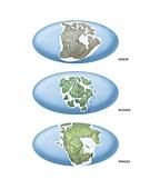 Earth supercontinents,artwork