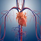 Heart attack,artwork