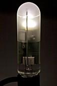 Liquid-cooled LED bulb
