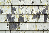 Weathered wooden panels