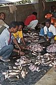 Fish market,Ethiopia