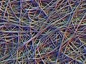 Artificial organic material,SEM