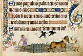 Medieval agriculture,Luttrell Psalter
