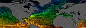 Northern Hemisphere surface currents