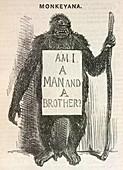 Evolution satire 'Monkeyana',1861