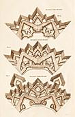 Belidor's Ravelin fortification methods