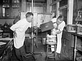 Ultraviolet light animal tests,1926