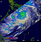 Super typhoon Haiyan,November 2013