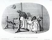 Bed-stocks