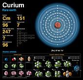 Curium,atomic structure