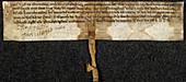 Charter of Magnus,King of Man
