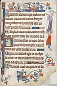 Luttrell Psalter