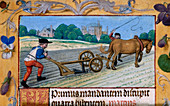 A man with a horsedrawn plough