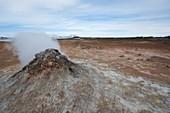 Geothermal vent,Iceland