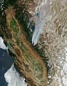 Rim Fire,California,August 2013