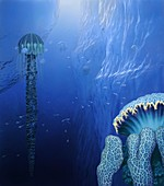 Marine life on Europa,artwork
