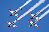 IAF Flight Academy aerobatics team