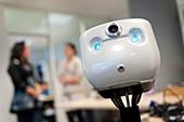 Telepresence office robot