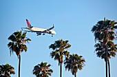 Passenger jet airliner landing