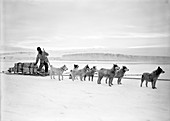 Terra Nova Antarctic exploration,1911