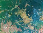 Deforestation in the Amazon,2003