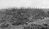 Mayan ruins,1910s