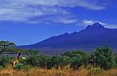 Mount Kilimanjaro,Kenya