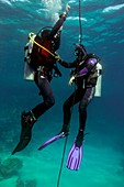 Diving student and instructor