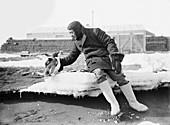 Penguin with an Antarctic explorer,1911