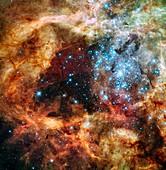 30 Doradus star clusters,HST image