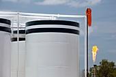 Oil production facility