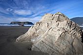 Tilted marine sandstone outcrop