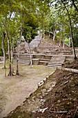 Maya plaza and temple,Belize